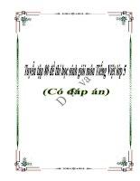 Tuyển tập 80 đề thi học sinh giỏi môn Tiếng Việt lớp 5 (có đáp án)
