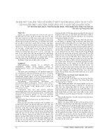 NHẬN xét CHUẨN tân cổ điển ở một NHÓM SINH VIÊN 18 25 TUỔI có KHUÔN mặt hài hòa TRÊN ẢNH kỹ THUẬT số CHUẨN hóa
