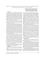 ĐIỀU TRỊ một số rối LOẠN NHỊP THẤT KHỞI PHÁT từ XOANG VALSALVA BẰNG NĂNG LƯỢNG SÓNG có tần số RADIO