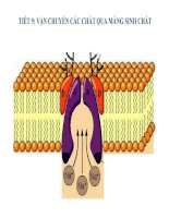 Bài giảng vận chuyển các chất qua màng sinh chất sinh học 10