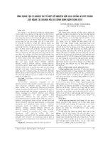 ỨNG DỤNG tạo PLASMID tái tổ hợp để NGHIÊN cứu các CHỦNG VI rút RHINO lưu HÀNH tại KHÁNH hòa và BÌNH ĐỊNH năm 2008 2010