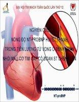NGHIÊN cứu NỒNG độ NT PROBNP HUYẾT THANH TRONG TIÊN LƯỢNG tử VONG ở BỆNH NHÂN NHỒI máu cơ TIM cấp có đoạn ST CHÊNH lên
