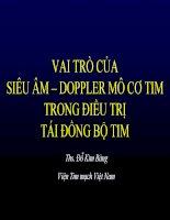 VAI TRÒ của SIÊU âm – DOPPLER mô cơ TIM TRONG điều TRỊ tái ĐỒNG bộ TIM