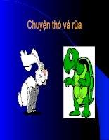 Câu chuyện thỏ và rùa ppsx