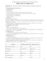 Tài liệu bồi dưỡng HSG lớp 10 THPT phần VSV