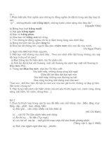 35 đề thi HSG môn tiếng việt lớp 5