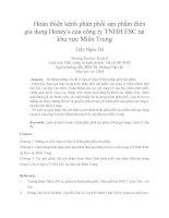 Hoàn thiện kênh phân phối sản phẩm điện gia dụng honeys của công ty TNHH ESC tại khu vực miền trung