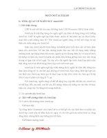 NGÔN NGỮ lập TRÌNH AutoLISP trong AutoCAD bản full