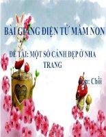 Bài giảng điện tử mầm non lớp Chồi đề tài Một số cảnh đẹp ở Nha Trang