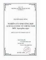 Nghiên cứu sinh tổng hợp acid gluconic từ chủng nấm mốc aspegillus niger