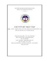 Hoàn thiện công tác quản lý thu thuế xuất nhập khẩu tại Chi cục hải quan Cửa khẩu Bí Hà