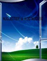 Bài giảng cấu trúc và chức năng nucleotide