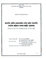 Bước đầu nghiên cứu bài thuốc chữa bệnh gan mật ( BGM )