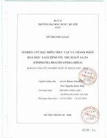 Nghiên cứu đặc điểm thực vật và thành phần hóa học loài bình vôi thu hái ở sapa ( stephania brachyandra diels )
