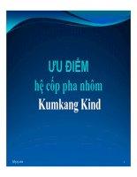 Hệ Cốp Pha Nhôm Kumkang Kind