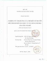Nghiên cứu ảnh hưởng của chế biến cổ truyền đến thành phần hóa học và tác dụng sinh học của cốt toái bổ (rhizoma drynariae bonii)
