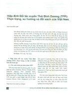 Hiệp định đối tác xuyên thái bình dương (TPP)   thực trạng, xu hướng và đối sách của việt nam