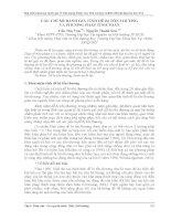 CÁC CHỈ số ĐÁNH GIÁ TÍNH dễ bị tổn THƯƠNG và PHƯƠNG PHÁP TÍNH TOÁN