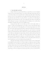Hoạt động của viện kiểm sát trong điều tra vụ án hình sự theo yêu cầu cải cách tư pháp