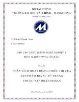 Phân tích hoạt động chiêu thị của sản phẩm bia sư tử trắng thuộc tập đoàn masan