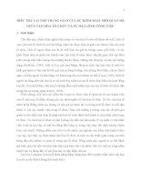 ĐIỀU TRA VAI TRÒ TRUNG GIAN CỦA SỰ KIỂM SOÁT MỐI QUAN HỆ GIỮA VĂN HÓA TỔ CHỨC VÀ SỰ HÀI LÒNG CÔNG VIỆC