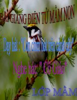 Bài giảng điện tử mầm non lớp Mầm đề tài Âm nhạc con chim hót trên cành cây