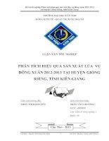 phân tích hiệu quả sản xuất lúa vụ đông xuân 2012 2013 tại huyện giồng riềng, tỉnh kiên giang
