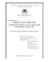 Bài tập nhóm chính sách vô hiệu hóa, chính sách tiền tệ và hội nhập tài chính toàn cầu
