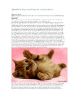 Hãy tả hình dáng và hoạt động của con mèo nhà em