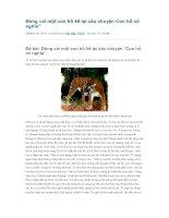 Đóng vai một con hổ kể lại câu chuyện con hổ có nghĩa