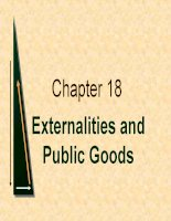 chapter 18 externalities and public goods