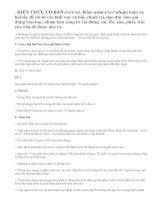 Viết bài tập làm văn số 1 lớp 11