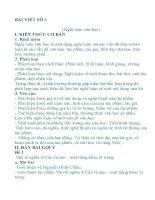 Hướng dẫn soạn văn : Bài viết số  3 (Lớp 11)