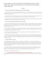 Về bài thơ Mộ ( Chiều tối) của Hồ Chí Minh
