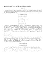 Cảm nhận về đoạn trích trong bài thơ Sóng - Xuân Quỳnh