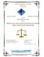 pháp luật việt nam về quyền của người chưa thành niên phạm tội