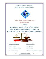 hoạt động ban hành và áp dụng văn bản quy phạm pháp luật của cấp tỉnh, thực tiễn tại tỉnh hậu giang