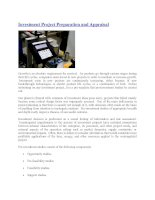 Investment project preparation and appraisal