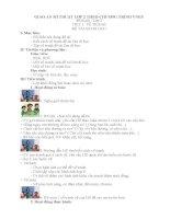 Giáo án mĩ thuật lớp 2 theo chương trình VNEN (FULL)