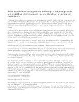Phân tích bài thơ Tự Tình của Hồ Xuân Hương (Bài 2)