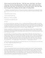 Phân tích bài thơ Ánh trăng của Nguyễn Duy ( bài 3).