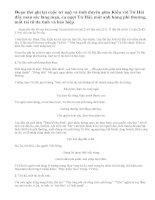 Phân tích nhân vật Từ Hải qua đoạn thơ: Kiều gặp Từ Hải.(Trích Truyện Kiều - Nguyễn Du)