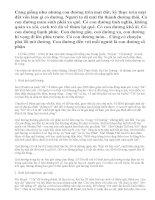 Phân tích truyện ngắn Cố hương của văn hào Lỗ Tấn.