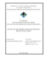 study on the production of ethanol from mango peel