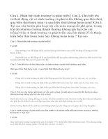 Bài 1,2,3,4 Sinh 11 trang 151