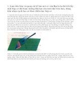 Thực hành: quan sát tế bào và mô :nội dung và cách tiến hành bài thực hành