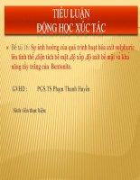 Tiểu luận động học xúc tác: Ảnh hưởng của quá trình hoạt hóa axit H2SO4 lên bentonite