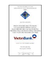 phân tích rủi ro tín dụng và giải pháp phòng ngừa, hạn chế rủi ro tại ngân hàng thương mại cổ phần công thương việt nam chi nhánh cần thơ