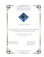 đề tài: ảnh hưởng của phật giáo nam tông đối với đời sống tinh thần của người khmer nam bộ