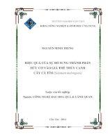 hiệu quả của sự bổ sung thành phần hữu cơ vào giá thể thủy canh cây cà tím (solanum melongena)